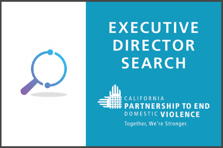 "A purple and blue magnifying glass is to the left, with the following text in white against a blue background: ""Executive Director Search."" The Partnership's logo in white is beneath."