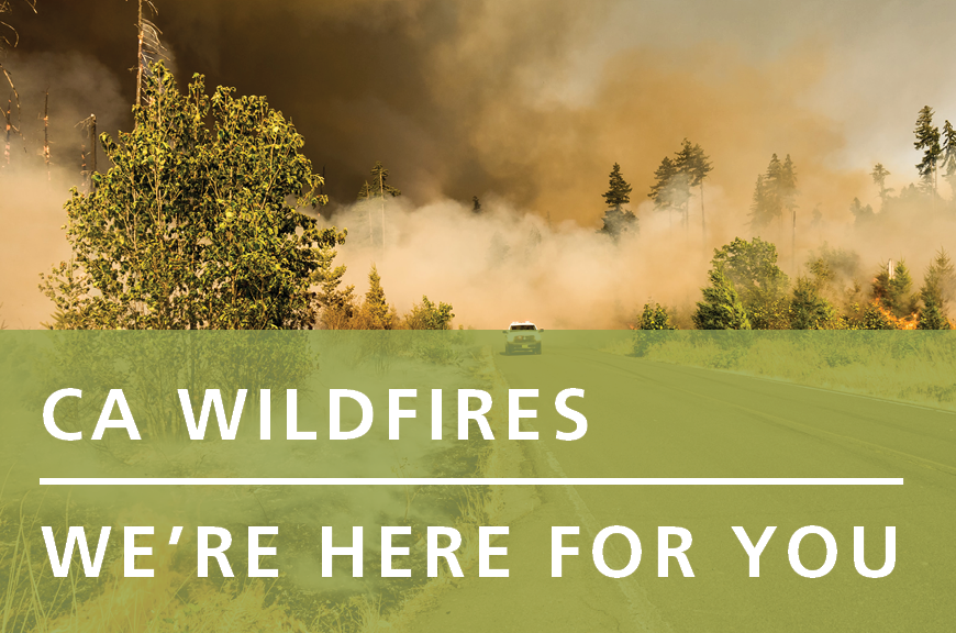 "Smoke emerges from trees in the background. Shown against a green rectangle, white text reads, ""CA Wildfires 